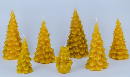 Beeswax Evergreen Tree Candles