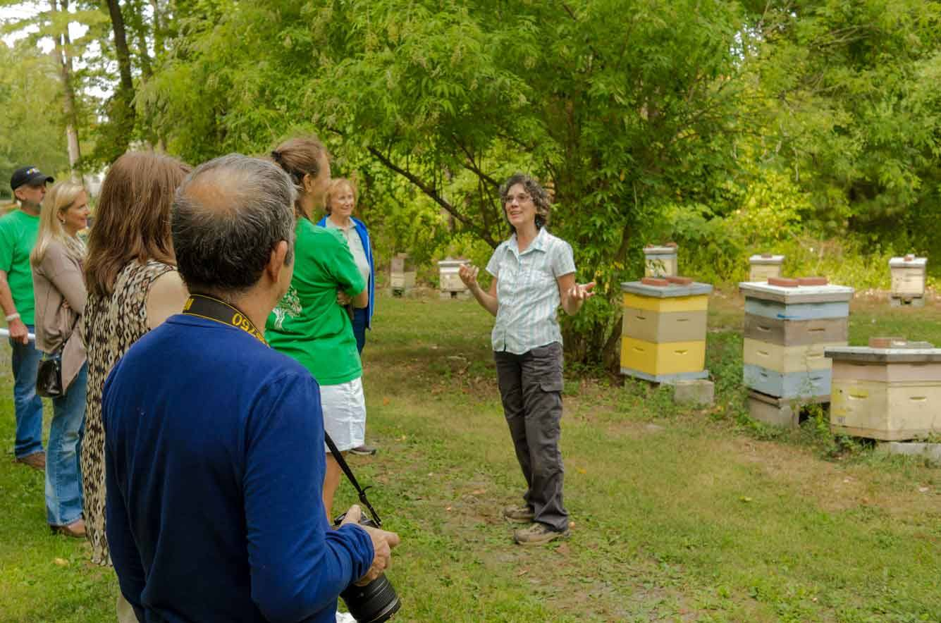 EM Gold Beekeepers Beekeeping giving a bee tour Photo