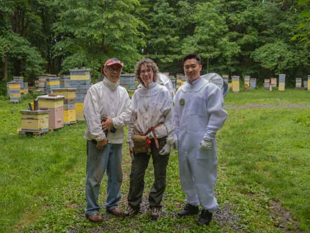 NJ New Beekeeper Mentoring