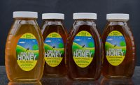 Classic 1lb. glass jar filled with our NJ Honey