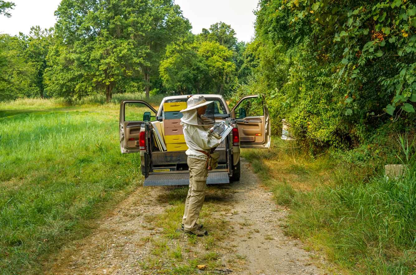 EM Gold Beekeepers Beekeeping updating our field notes Photo